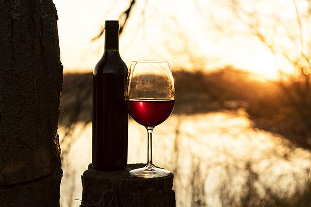 Entre histoire et vin